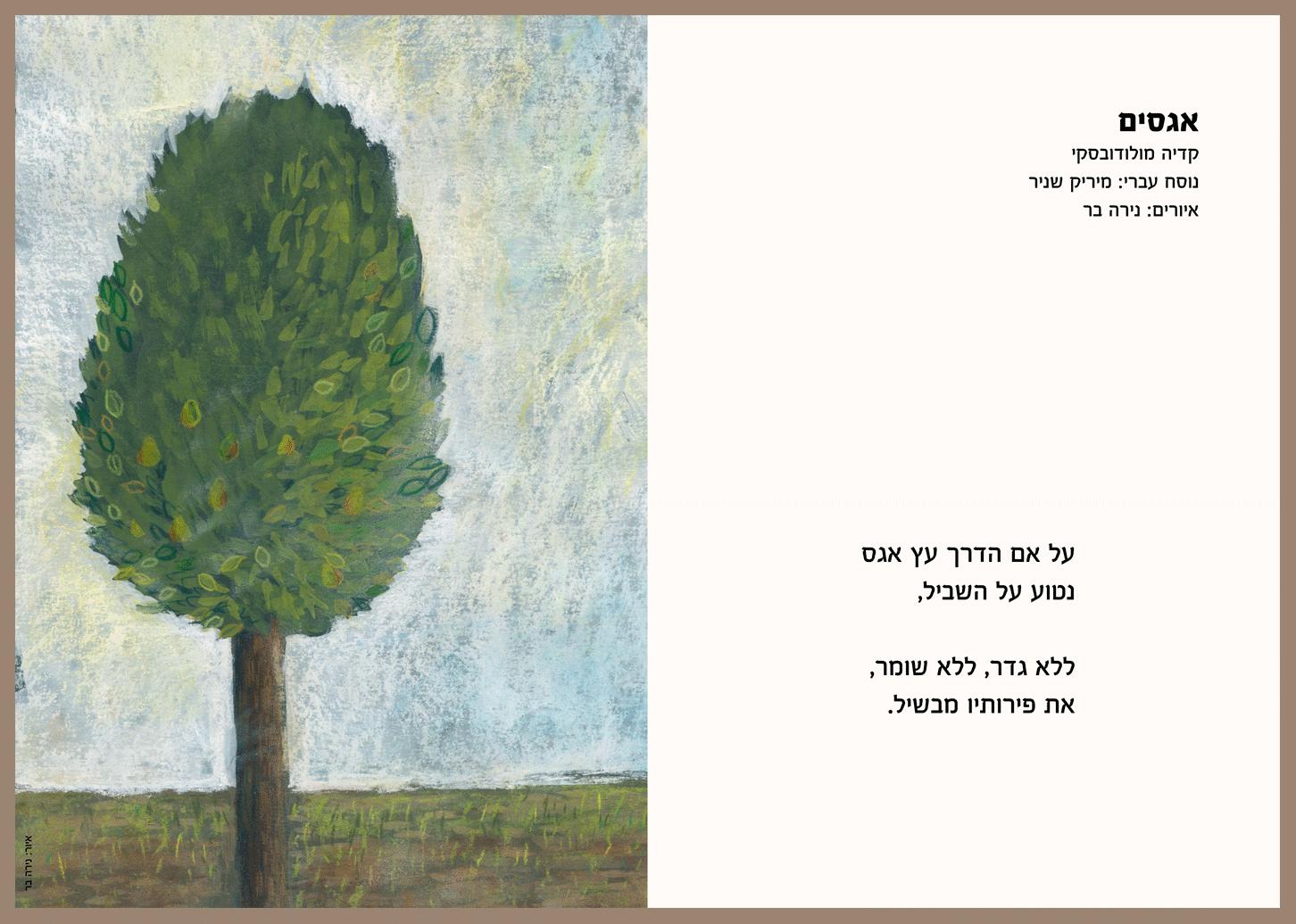 אגסים איור שיר(1)Pears poem