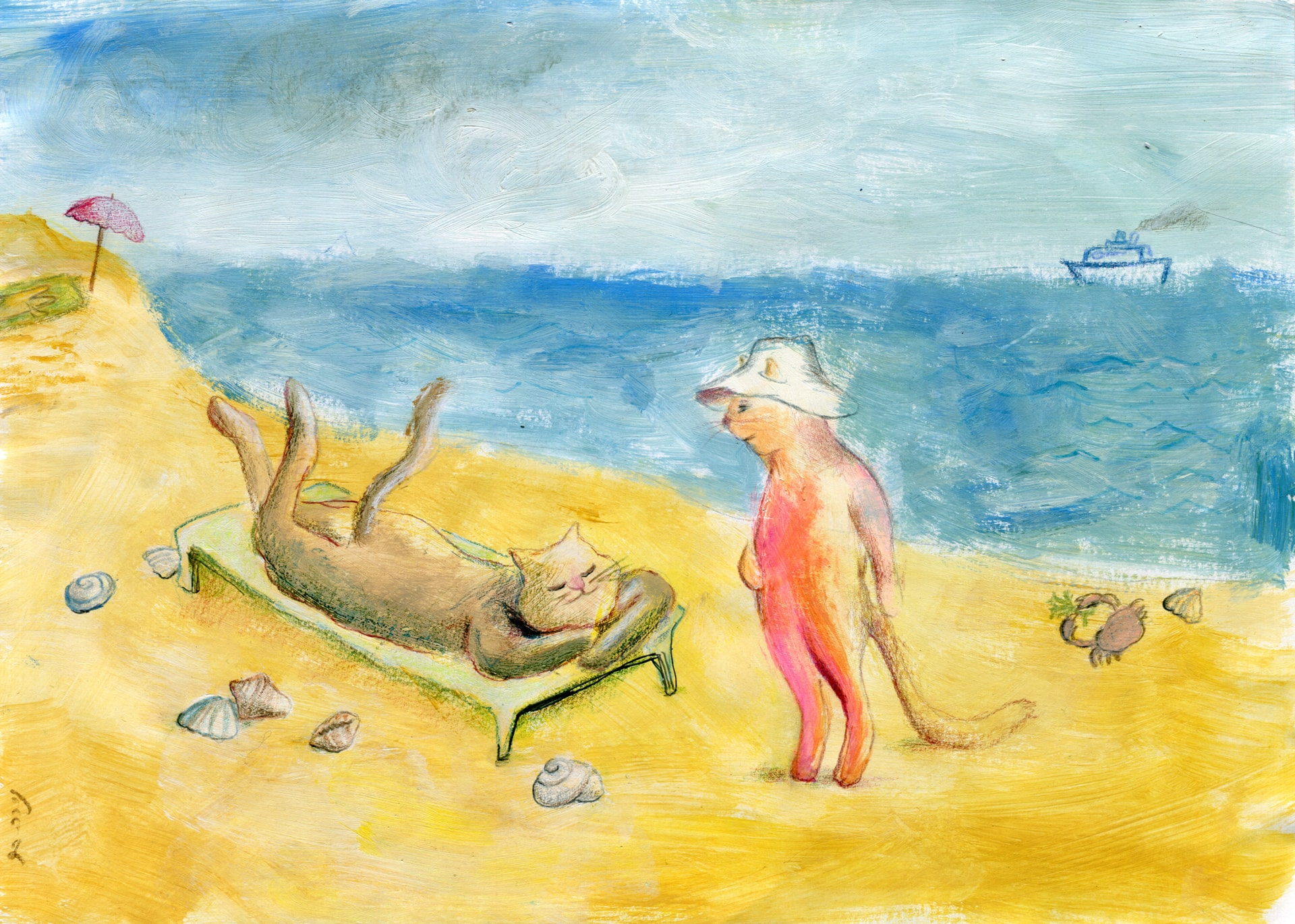 חתולים בחוף הים