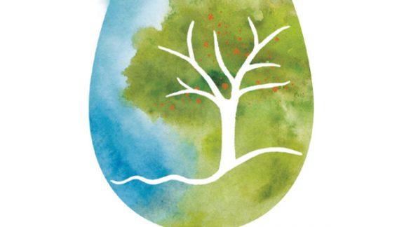 לוגו מאוייר חדש, כיצד יצרתי את הלוגו החדש שלי
